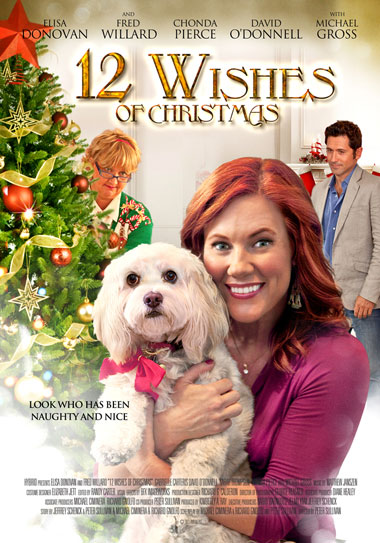Win a copy of '12 Wishes of Christmas' on DVD