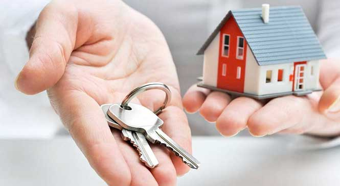 Would You Like A FREE Property Mentor?
