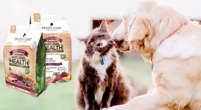 Free Sample of Dog/Cat Food
