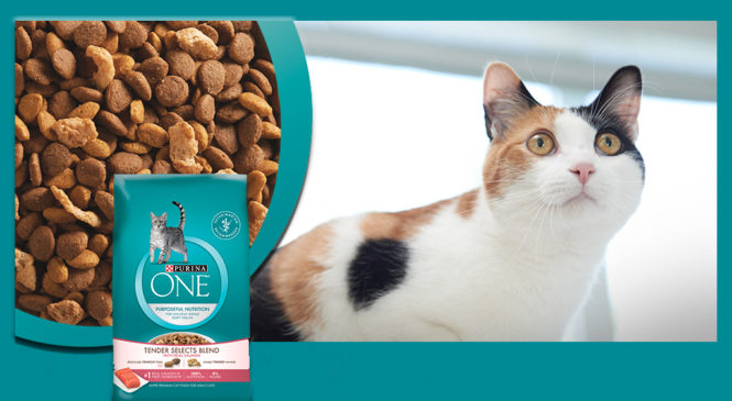 Free Purina One Tender Selects Blend With Real Chicken Sample