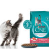 Free Purina One Salmon & Tuna Cat Food
