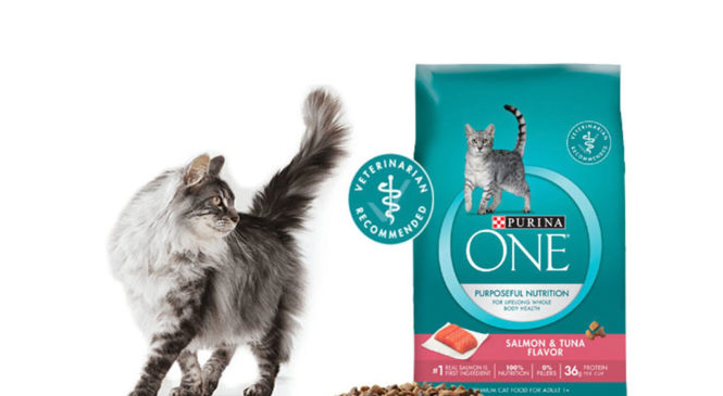 Free Purina One Salmon & Tuna Cat Food